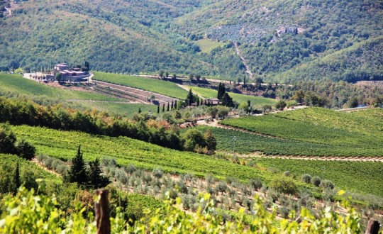 Discovering the Chianti Region in Tuscany, Italy