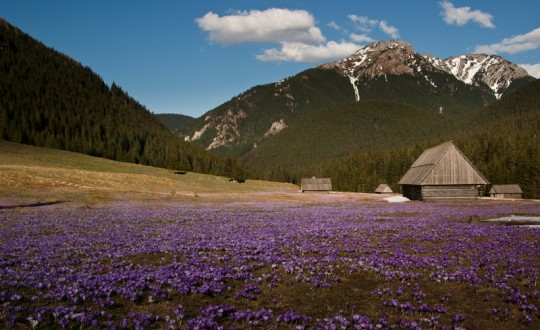 Trekking in the Pieniny and the Polish Tatra Mountains