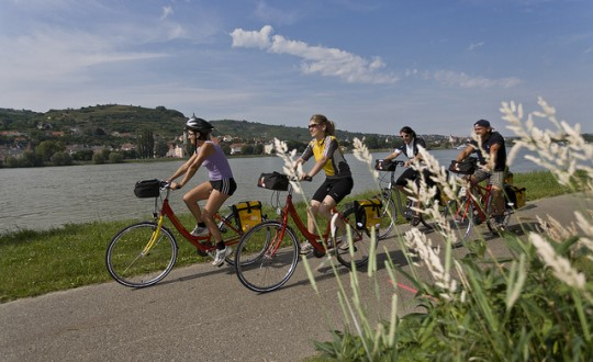 Danube Cruise and Bike