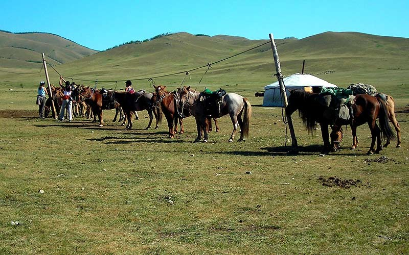 The Ultimate Steppe Riding Tour (Mongolia)