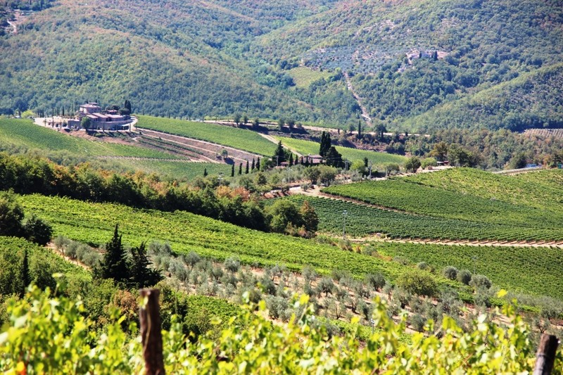 Italian Florence: Discovering The Chianti Region In Tuscany, Italy