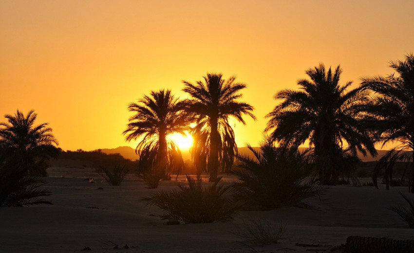 Mauritania - a Land of Desert and Ocean