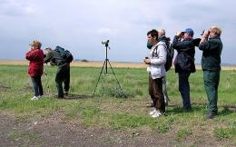 birdwatching vacation bulgaria