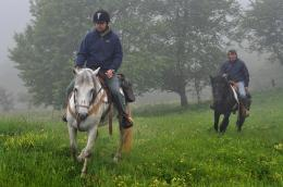 riding in the misty forest, North Balkan Mountain, Bulgaria