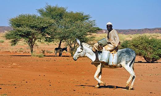 Знаете ли, че в Судан има повече от 250 пирамиди?