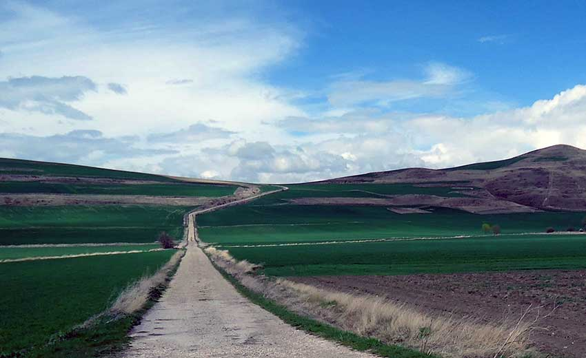 Camino de Santiago French Way - Part 3 Logrono to Burgos