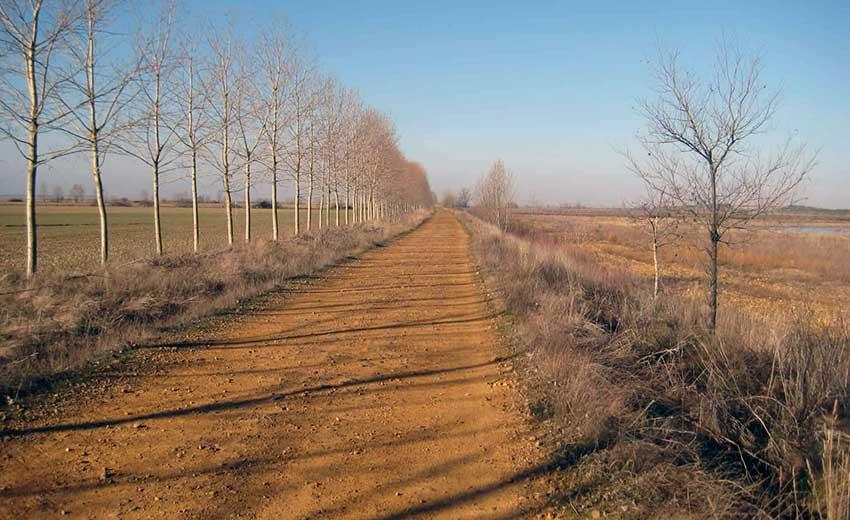 Camino de Santiago French Way - Part 4 Burgos to Sahagun