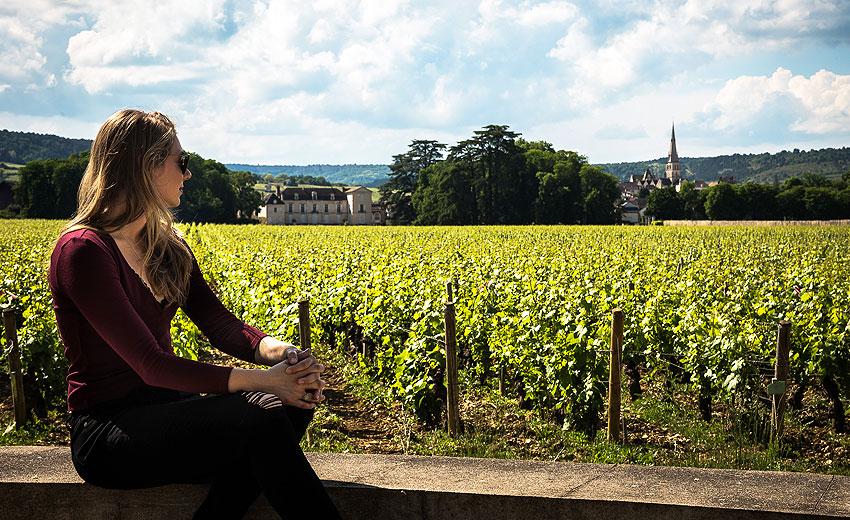 Burgundy: Walk amongst the 'Grands Crus'