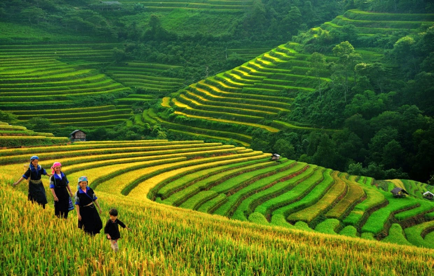 Sa Pa Trek & Halong Bay Cruise (Vietnam)