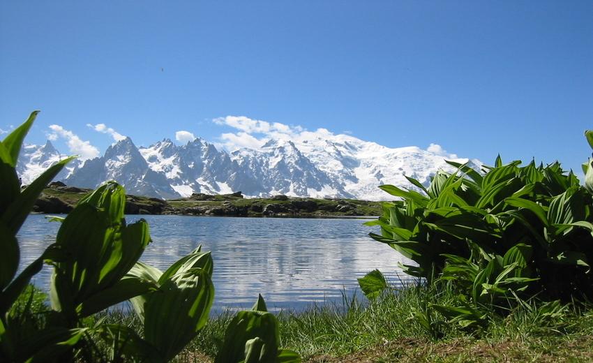 Tour du Mont Blanc Circuit