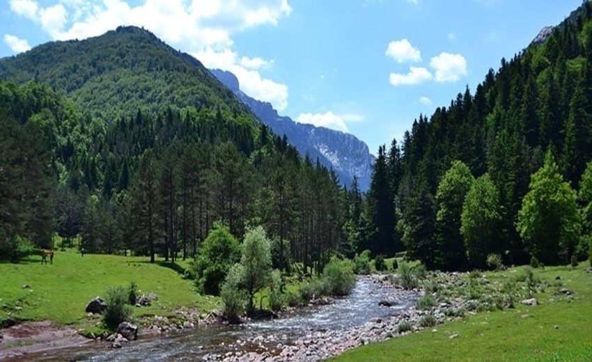 The Path of the Bear - self-guided hike in the western Pyrenees