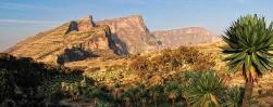 Simien Trekking – Ethiopia from a Bird's Eye View