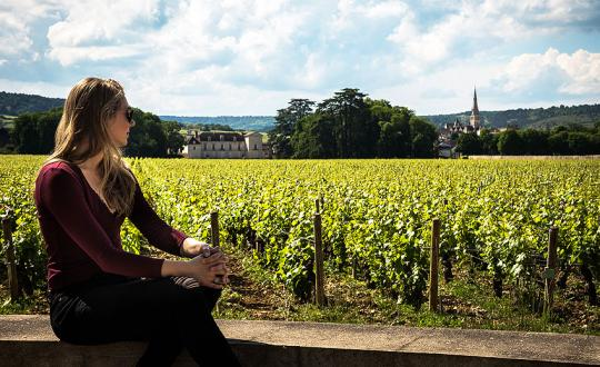 Burgundy: Walk amongst the 'Grands Crus'