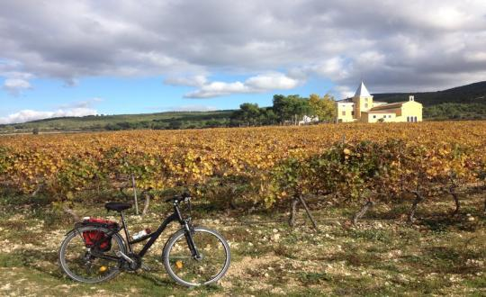 Cycling in Valencia, the Land of Contrasts