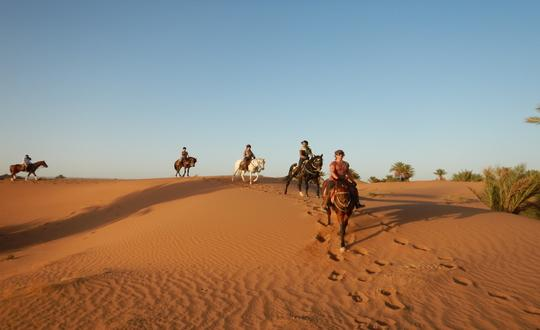 On a Horse in the Moroccan Desert