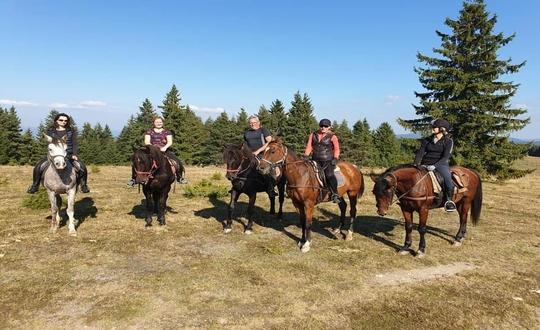 3-Day Trail Ride in Plana Mountain