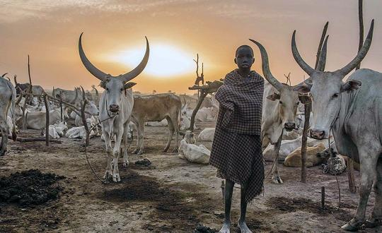 South Sudan - Land of the Cattle Herders