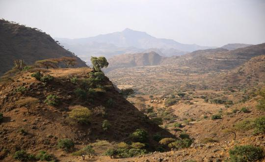 Simien Trekking - Ethiopia from a Bird's Eye View